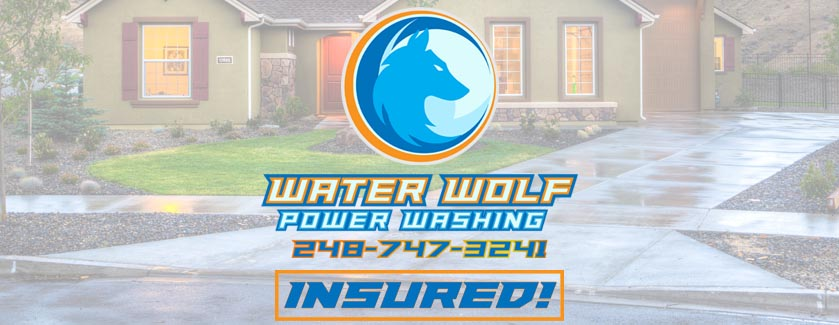 Water Wolf Power Washing